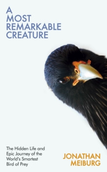 A Most Remarkable Creature : The Hidden Life and Epic Journey of the World�s Smartest Bird of Prey